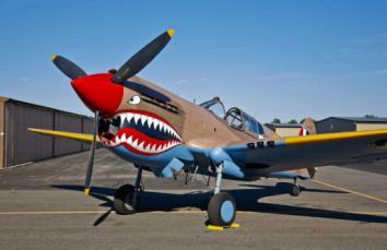 二战(战斧战机P-40)模型